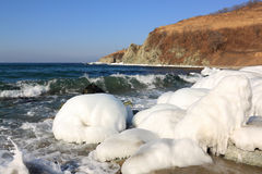 Ice covered stones on  seashore Royalty Free Stock Photography