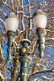 Ice Covered Street Light Royalty Free Stock Photos