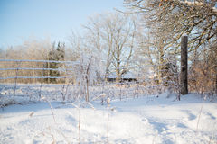 Ice Covered Wire Fence Sunny Winter Day. Beautiful bright sunny winter day. Ice covered wire fence in snow covered field. Ice covered branches Royalty Free Stock Photography