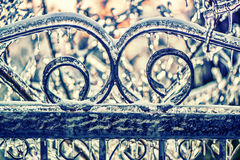 Ice Covered Wrought Iron Gate - Retro Royalty Free Stock Photography