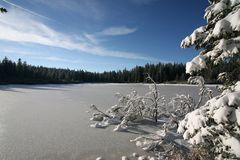 Ice cowerd lake. Photo was made in Slovenia in the year 2006 Royalty Free Stock Photography