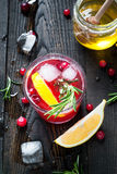 Ice cranberry drink Royalty Free Stock Photo