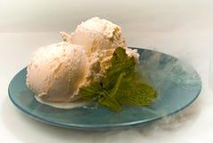 Ice-cream. Two scoops of vanilla ice-cream with mint Stock Photos