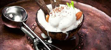 Ice cream with almonds. Ice cream with almond and cinnamon flavor in a coconut dish Stock Images