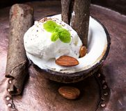 Ice cream with almonds. Ice cream with almond and cinnamon flavor in a coconut dish Royalty Free Stock Image