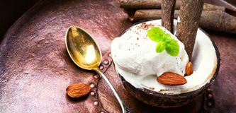 Ice cream with almonds. Ice cream with almond and cinnamon flavor in a coconut dish Stock Photography