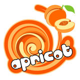 Ice cream apricot vector illustration