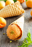 ice cream from apricots. Royalty Free Stock Images