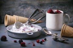 Ice cream with berries Stock Photos