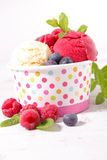 Ice cream. With berries fruits Royalty Free Stock Photos