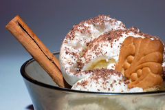 Ice cream with biscuit, chocolate and cinnamon Royalty Free Stock Images