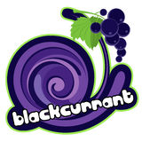 Ice cream blackcurrant Royalty Free Stock Photos