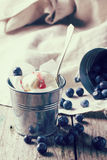 Ice cream with blueberries Stock Image