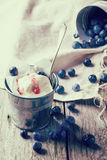 Ice cream with blueberries Stock Photos