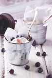 Ice cream with blueberries Royalty Free Stock Photo