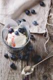 Ice cream with blueberry Stock Photos