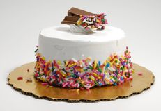 Ice Cream Cake royalty free stock image