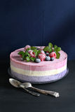 Ice cream cake with blueberry and raspberry Stock Photos