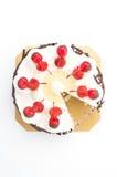Ice-cream cake Stock Image