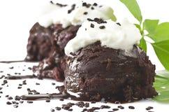 Ice cream chocolate Stock Images
