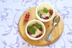 Ice cream with chocolate and red currant Royalty Free Stock Images