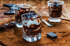 Ice cream with chocolate in small glasse. S on cocoa background Stock Photography
