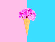 Ice cream cone flowers over pink blue colorful background. Top view Royalty Free Stock Images