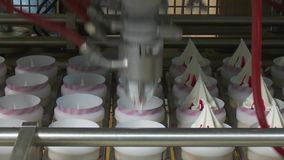 Ice cream production line. Ice cream in a cone. Ice cream fills paper cups. Ice cream factory. Ice cream production line stock video footage