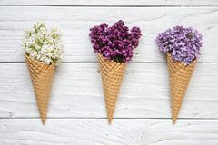 Ice cream cones with colorful lilac flowers over white wooden background. top view royalty free stock image