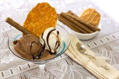 Ice cream cup. Chocolate ice cream cup cream with cookies Stock Photos