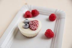 Ice cream cupcakes Stock Images