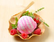 Ice cream dessert Stock Photography