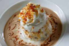 Ice cream dessert. With nuts Royalty Free Stock Images