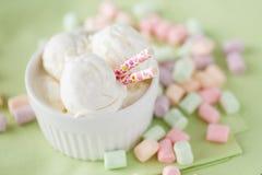 Ice cream dessert. Closeup view Stock Images