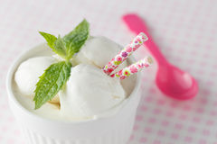 Ice cream dessert. Closeup view Royalty Free Stock Images