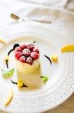 Ice cream dessert. Delicate ice cream cake with raspberries Stock Images