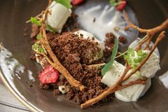 Ice cream dessert. With raspberries, chocolate chips and greenery on a brown plate Stock Photography