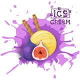 Ice Cream Fig Ball Fruit Dessert Choose Your Taste Cafe Poster. Vector Illustration Stock Photo