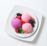 Ice cream with fresh berries Stock Image