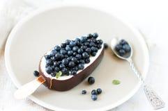Ice cream with fresh blueberries. Stock Photos