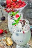 Ice cream with fresh fruit Stock Image