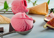Ice cream with fruits Stock Photos