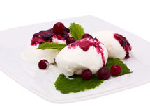 Ice cream with jam and cranberries Stock Image