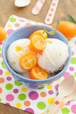 Ice cream with kumquats Royalty Free Stock Image