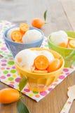 Ice cream with kumquats Stock Photos