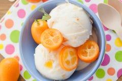 Ice cream with kumquats Royalty Free Stock Image