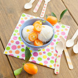 Ice cream with kumquats Stock Photos