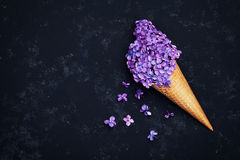 Ice cream of lilac flowers in waffle cone on black background from above, beautiful floral arrangement, vintage color, flat lay. Styling royalty free stock photo