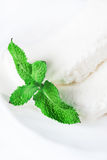 Ice cream with mint leaves Royalty Free Stock Images