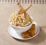 Ice cream with nuts Stock Images